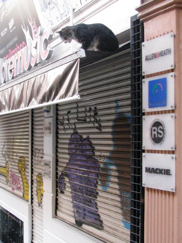 Yaşamın Kareleri; İstanbul'un Sokaklarından