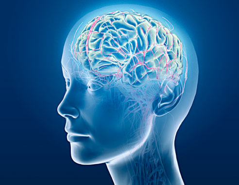 Beyninizi Ne Kadar İyi Tanıyorsunuz?