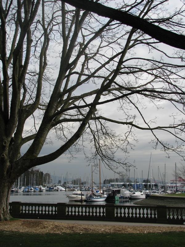 Yaşamın Kareleri; Vancouver