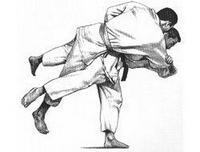 Tek Kollu Judocu