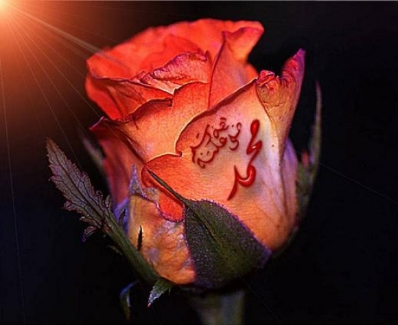 Kainata ve Kalplere Doğan Güneş