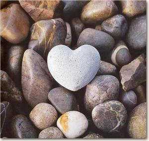 Her Şekil Aşk