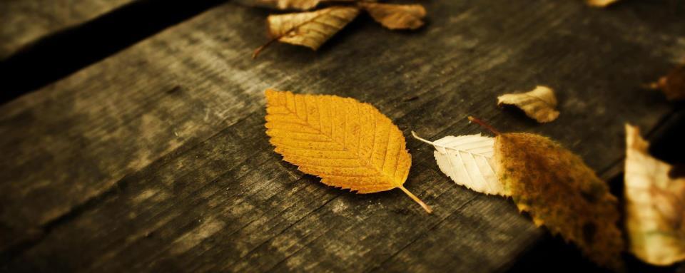 Aşkın Mevsimi Hüzündür