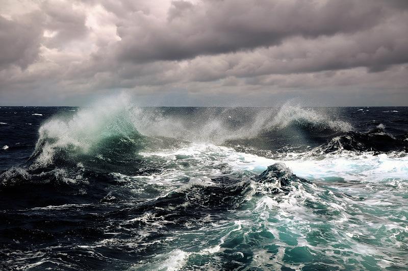 Denizimin Dalgası