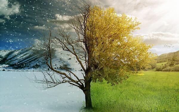 Bir Mevsim Susuyorum